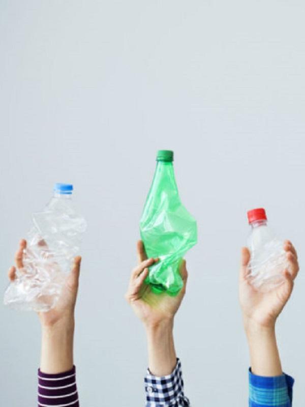 Buscando alternativas naturales al plástico