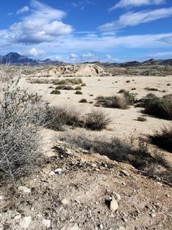 Las consecuencias medioambientales y sociales de la desertización rural