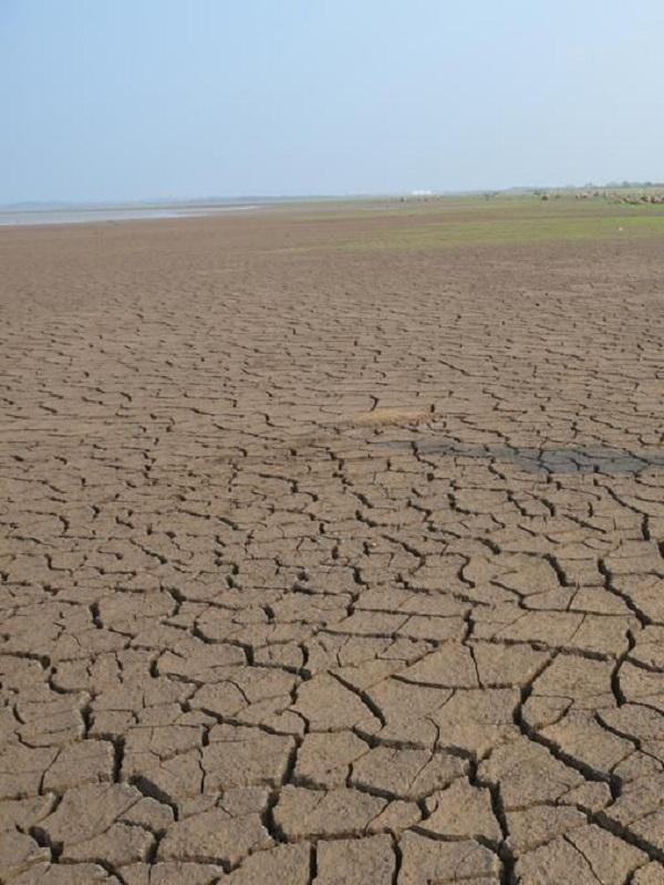 La temperatura aumentará 2,2ºC en el Mediterráneo en 2040 si no se toman medidas de mitigación, según la UpM