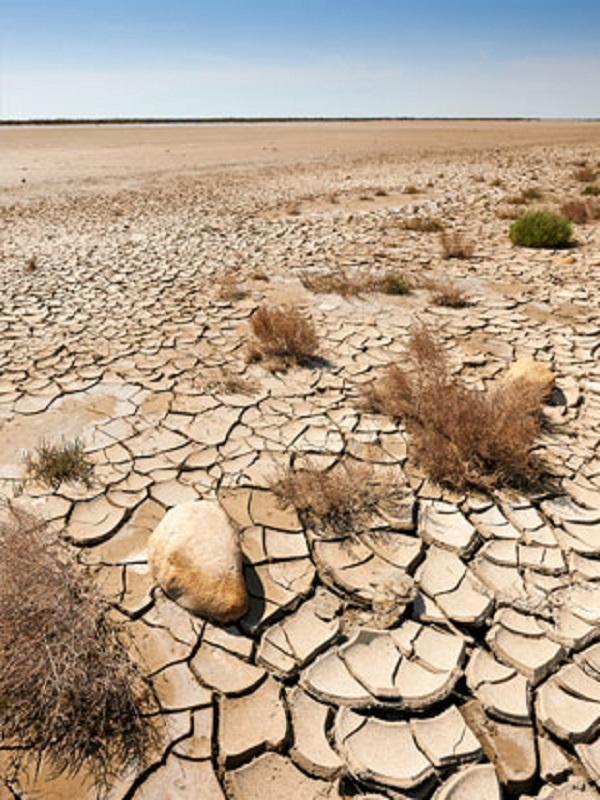 La próxima década será vital para ganar la batalla al cambio climático