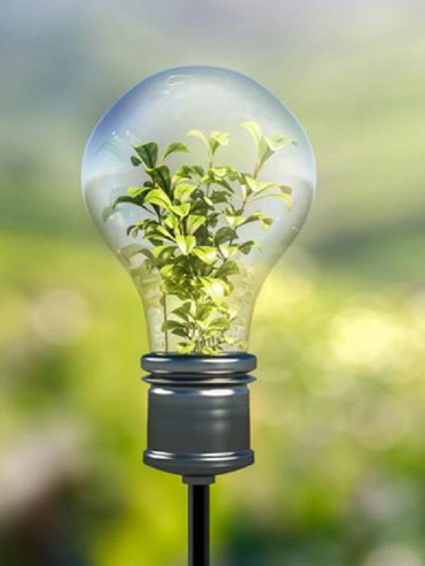 UC3M pone en marcha el Laboratorio de Economía de la Energía para propiciar el impulso a la transición energética