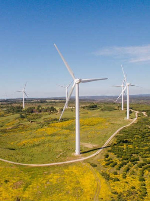 Ayudas para impulsar la instalación de energías renovables en las Islas Canarias