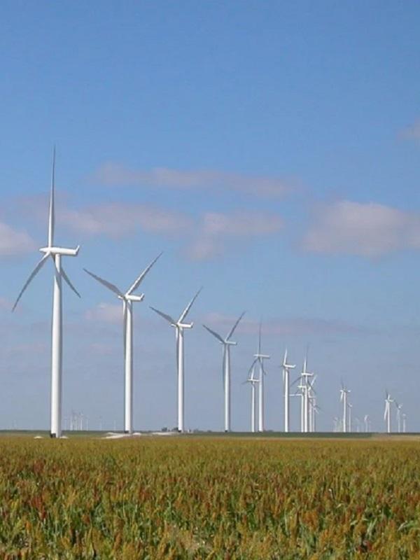 El Parque Eólico de Arico dará energía a 7.000 viviendas