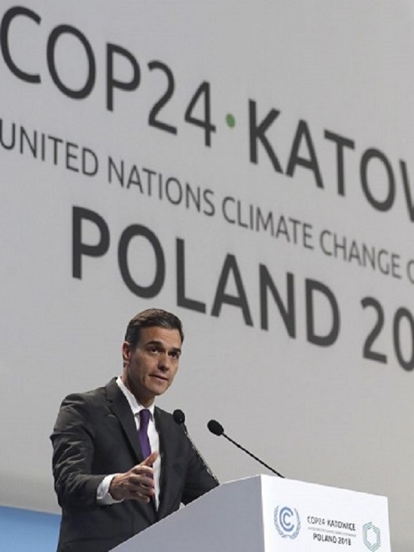 WWF denuncia el bloqueo y la falta de ambición climática de países clave durante la COP24
