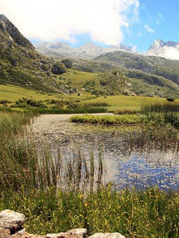 Es necesario mejorar el Plan de Salud y Medio Ambiente de Asturias