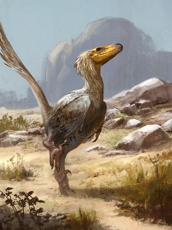 El origen de las plumas retrocede en 70 millones de años