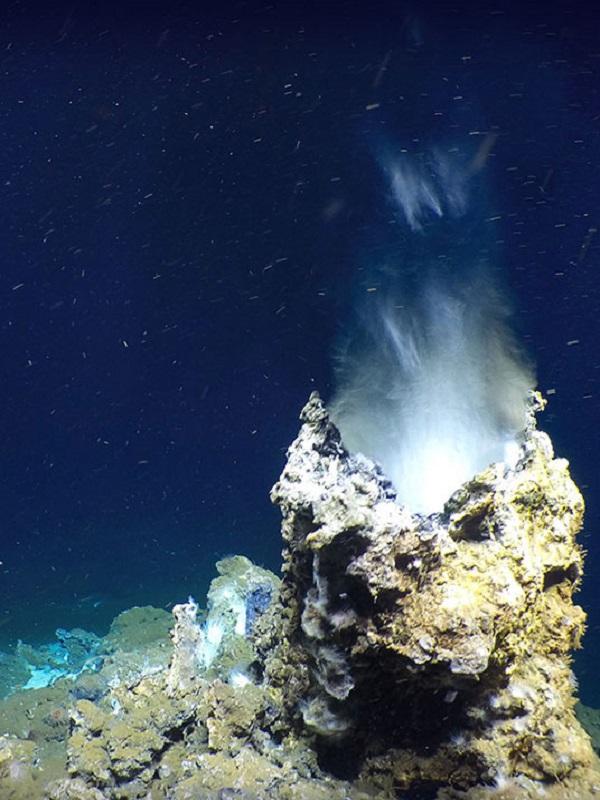 Alerta, se desata 'la fiebre del oro' minera en los fondos marinos
