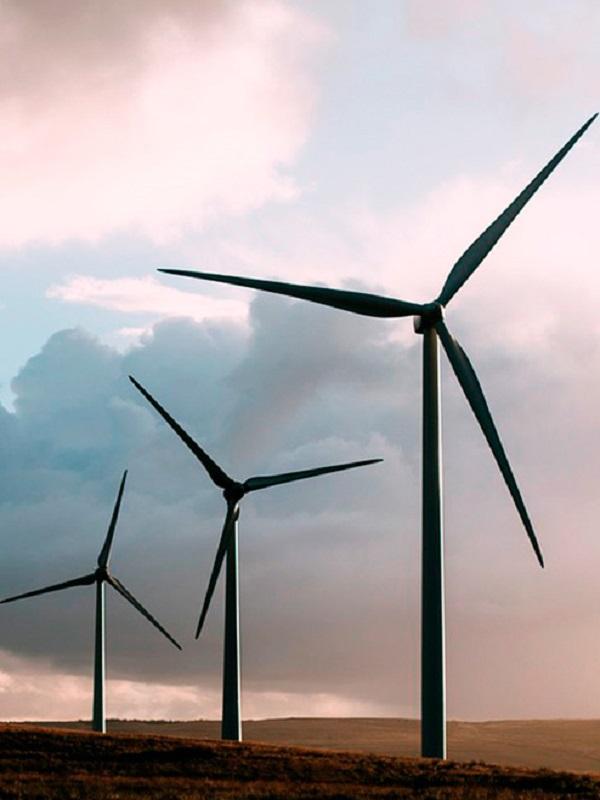 La nueva subasta eólica garantiza la instalación en Canarias de al menos 180 megavatios más