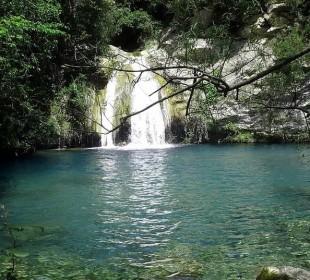Alerta por contaminación de dos ríos en Alcover (Tarragona)