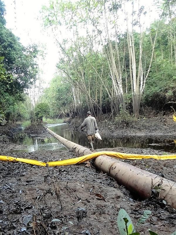 Hallan metales perjudiciales en indígenas de la Amazonia peruana cercanos a un oleoducto