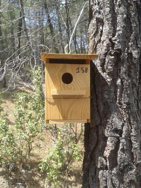 Unas cuarenta personas elaboran cajas-nido para las aves de Torrelavega