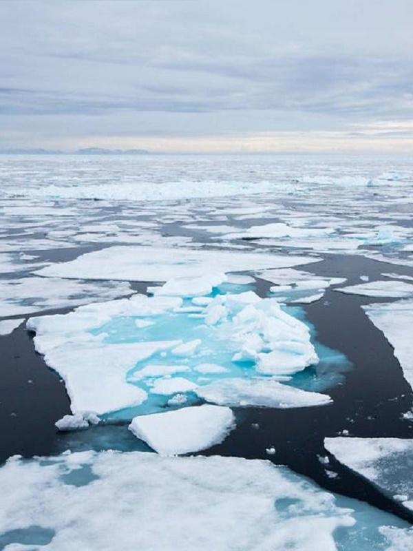 La acidificación del Atlántico norte tendrá consecuencias nefastas para los ecosistemas profundos