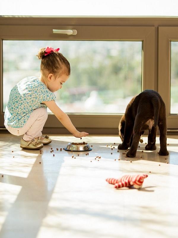 El afecto entre humanos y perros se remonta a hace 14.000 años