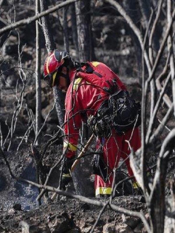 La Rioja arde intencionadamente