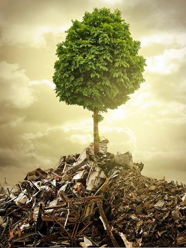 Medio Ambiente confía en aprobar la Estrategia de Economía Circular en torno al mes de mayo