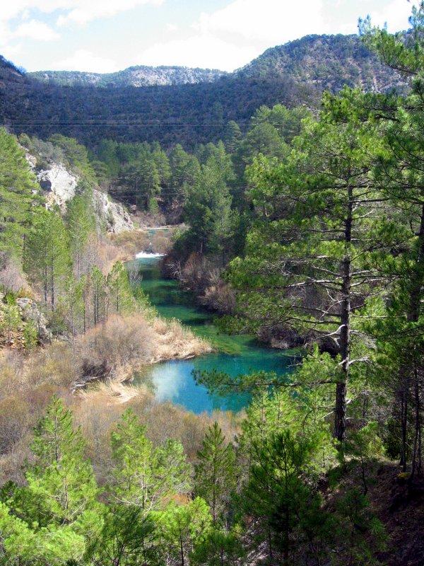 Ecoturismo en la Comarca de Molina y el Alto Tajo