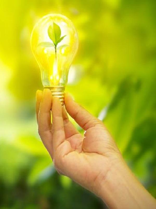 ECOticias.com: 'El Periódico Verde'