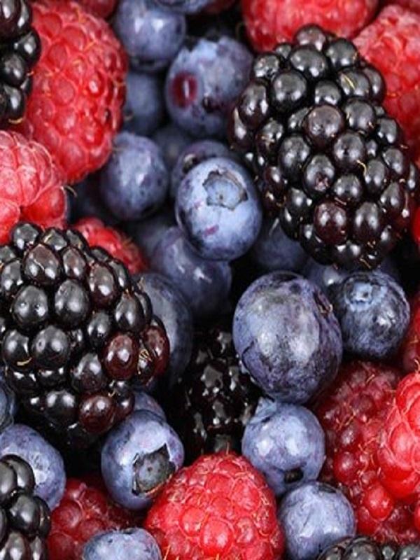 Caña con frutos rojos
