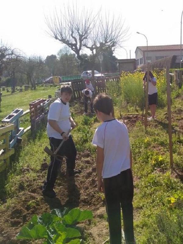 El diario escolar de Los Ecovigilantes de Ourense, toda una muestra de afecto por el medio ambiente