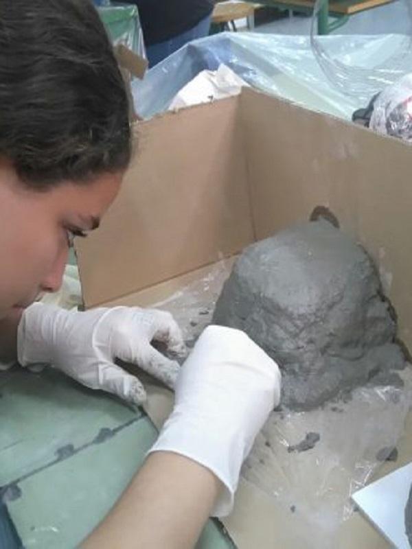 Más de 250 personas colaboran con científicos para recuperar especies depredadoras de plagas