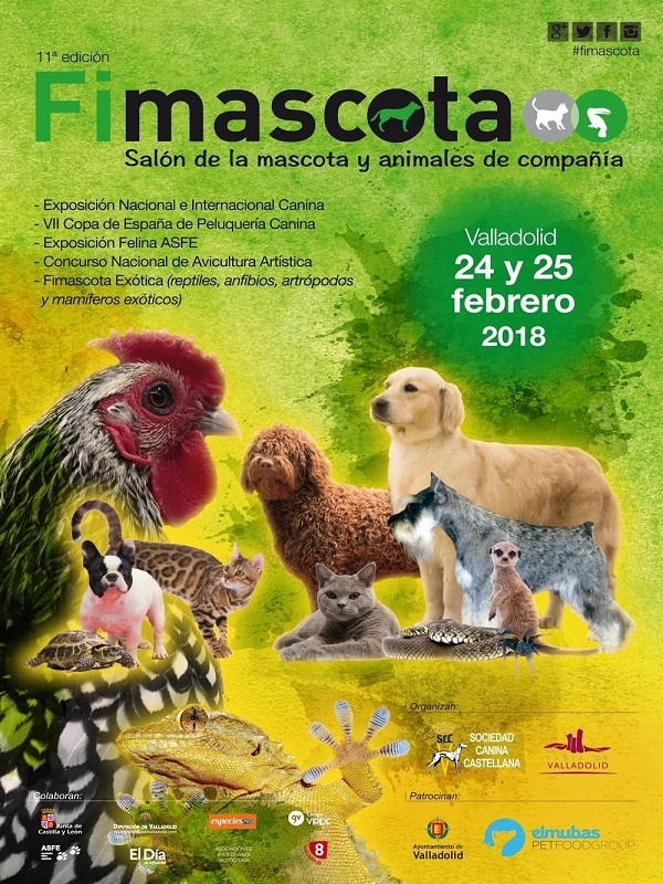 Fimascota contarán con más de 3.000 perros, 200 gatos, conejos y reptiles