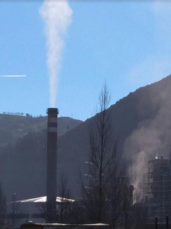 Hunosa va tener que denunciar al Consejero de Medio Ambiente  de Asturias que dijo que la térmica de la Pereda contamina bastante