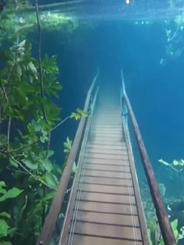 Una ruta de senderismo brasileña inundada dio lugar a un fascinante paraíso submarino