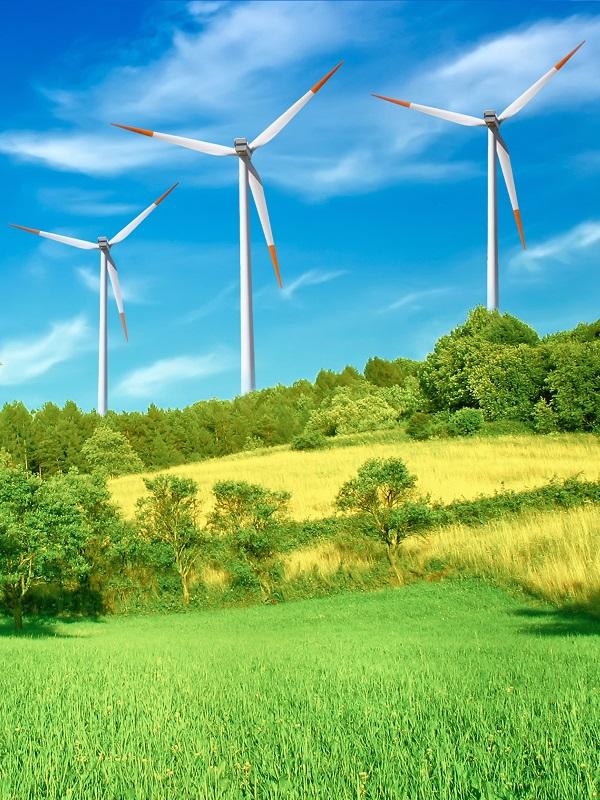 La FOBIA del PP a las energías renovables