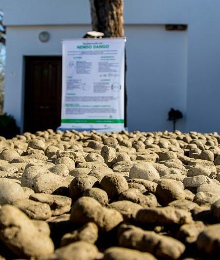 Un millar de escolares de la provincia de Málaga participarán en nuevos talleres de elaboración de bombas de semillas