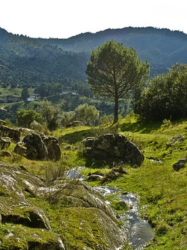 Exigen la apertura de vías pecuarias en el Parque Natural Sierra de Andújar (Jaén)