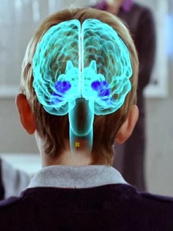 El estrés odia a nuestro cerebro