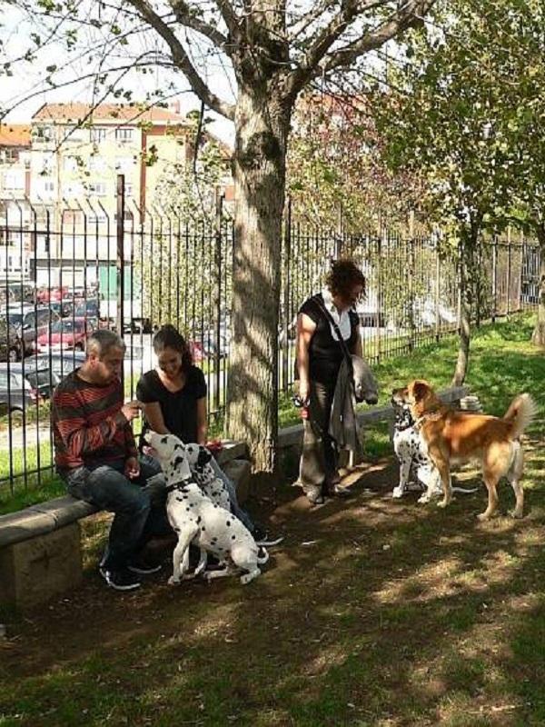 Barakaldo pone en marcha su primera zona de esparcimiento para perros