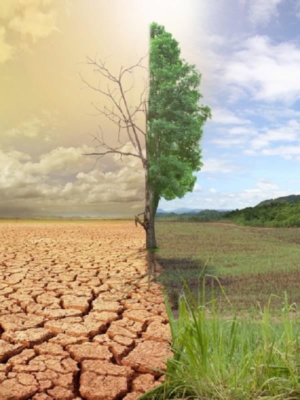 Generali contra el cambio climático