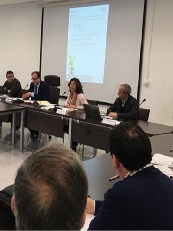 Diputación de Cádiz resalta las oportunidades de empleo de energías verdes en una jornada sobre el Proyecto ZEWKlima