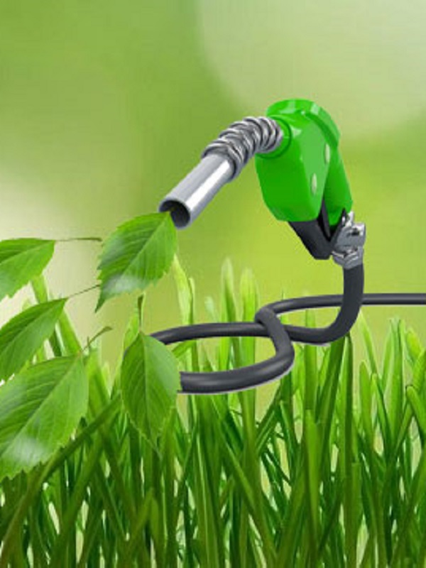 Tecnología verde transforma el CO2 en biocombustible