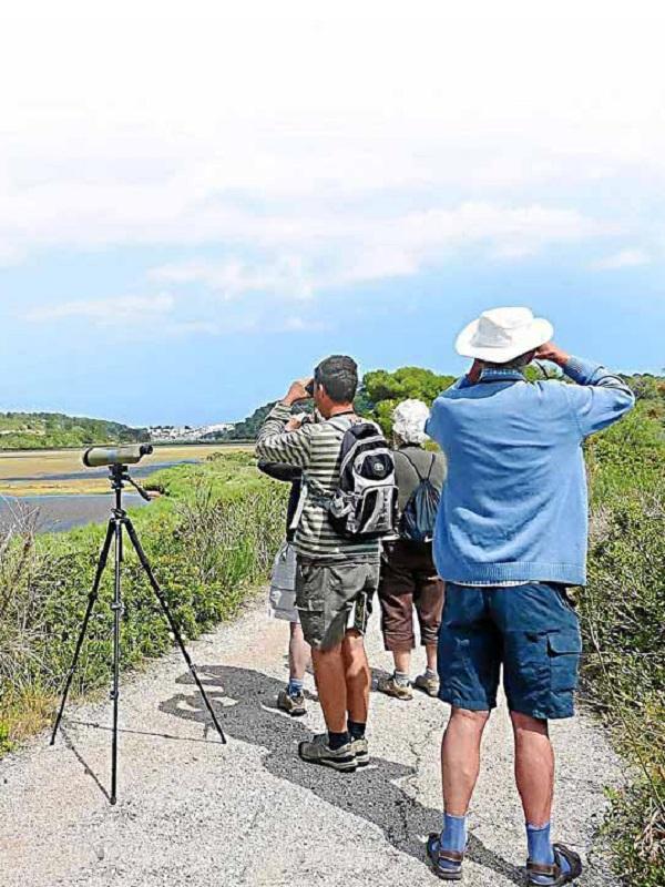 Calp crea varias rutas para el turismo de avistamiento de aves