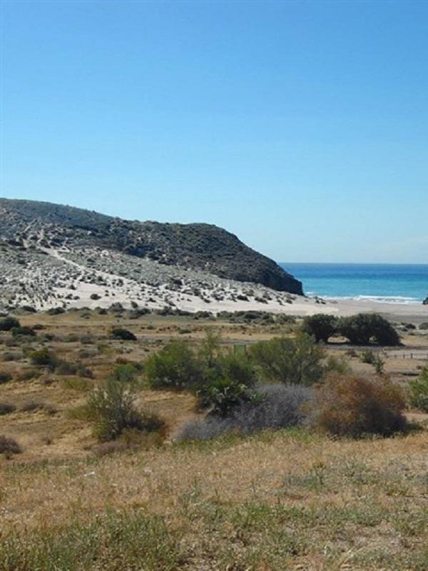 La Junta de Andalucía organiza nuevas actividades ecoturísticas para conocer en julio los espacios naturales