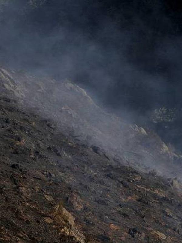 Un modelo de la NASA predice el riesgo de incendios a escala mundial