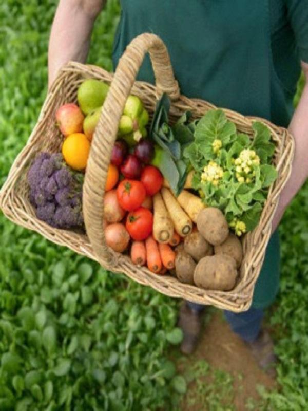 Si después de leer este artículo no consumes productos ecológicos tienes un problema