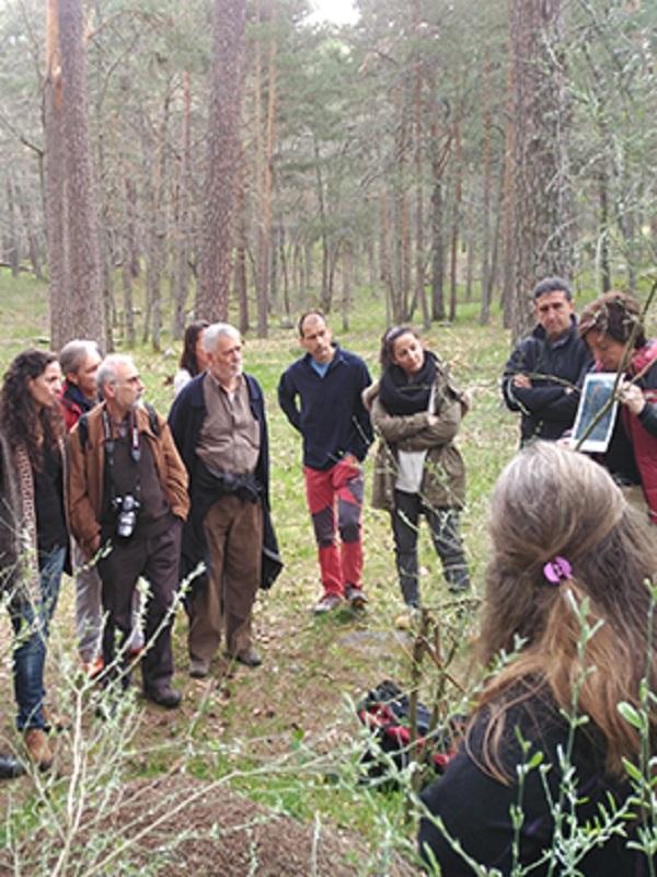 Europarc evalúa la comarca del Alto Tajo para su regreso a la Carta Europea de Turismo Sostenible
