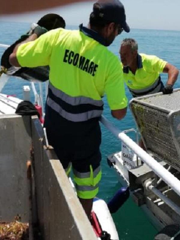 La Mancomunidad de la Costa del Sol retira en junio 152,5 toneladas de residuos de las aguas litorales