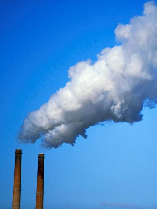 El Ayuntamiento de Sevilla reduce a 0 las emisiones de CO2