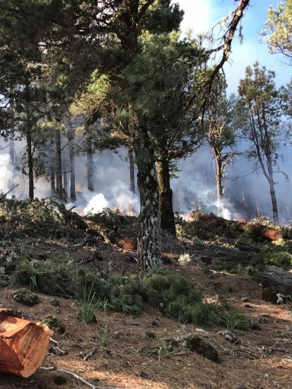 Valencia. Medio Ambiente fomenta el uso responsable de las zonas de acampada para evitar incendios forestales