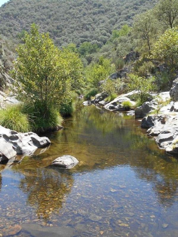 Régimen normativo de las reservas naturales fluviales