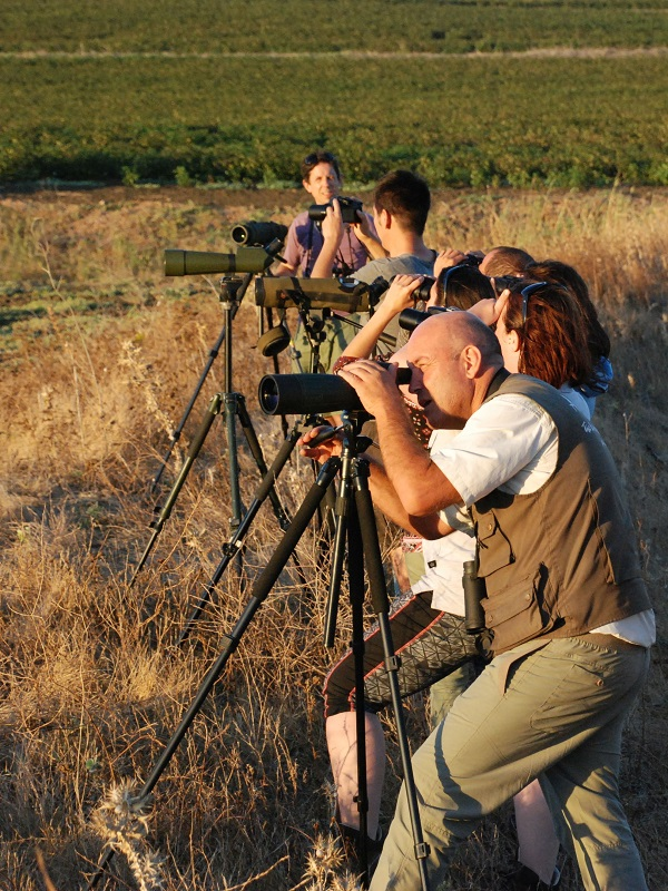 La Comarca de la Jacetania inaugura la temporada de salidas ornitológicas con una excursión este domingo