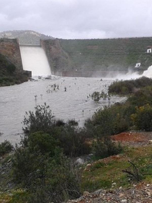Medio Ambiente prevé desembalsar en Huelva 216 hectómetros cúbicos durante el próximo año hidrológico