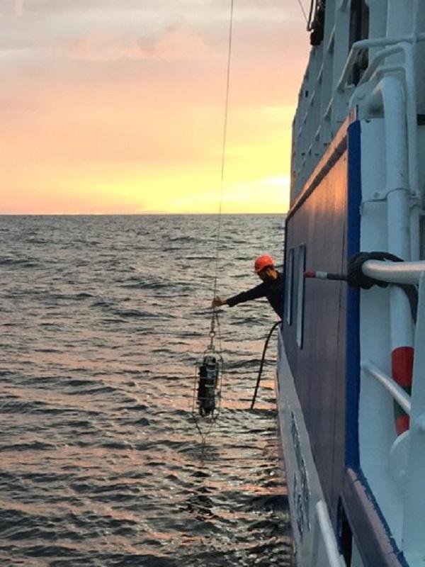 La temperatura media de la columna de agua en el litoral vasco ha aumentado casi medio grado en los últimos 30 años