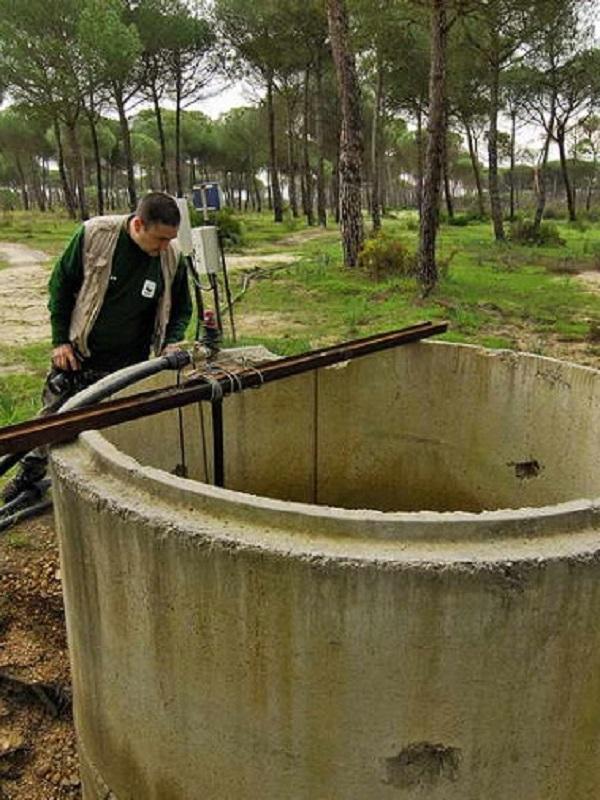 Por el cierre de los pozos ilegales de Doñana