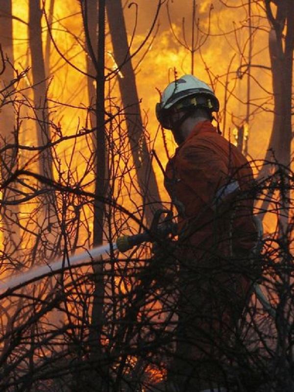 Andalucía, lluvia de millones en ayudas para la prevención de incendios forestales
