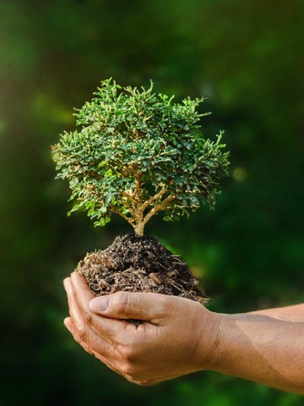 Gasto público y formación ambiental en Europa